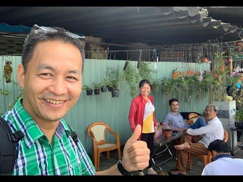 Kỷ Niệm Vui Nhớ Đời Đi Chợ Lan Ở Thành Thái: Mua Cù Lao Minh, về ra lan cỏ!