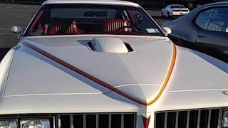 1977 Pontiac Can Am - The Last GTO?