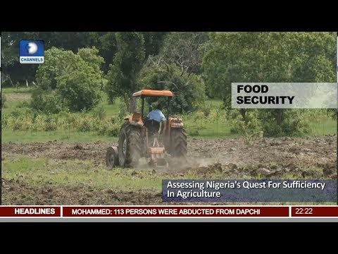 Nigeria's Quest For Sufficiency In Agriculture Pt.2 |News@10| 26/03/18