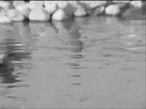 Dave Matthews - Sister - Music Video