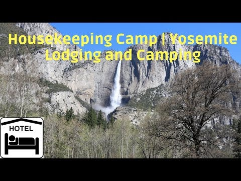 WHERE DO YOU STAY IN YOSEMITE?!? | Housekeeping Camp | Yosemite National Park Part 1