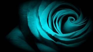 Piotr Zemła - Cień twoich dłoni  -dla kochanej mamy