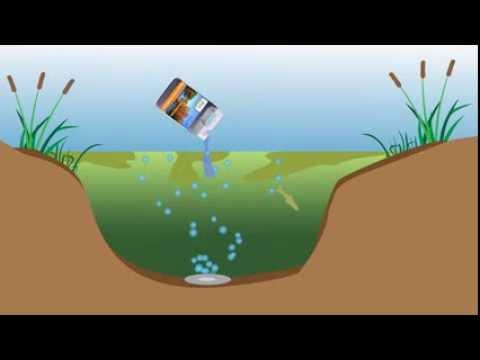 Nature's Pond: 3 step pond care