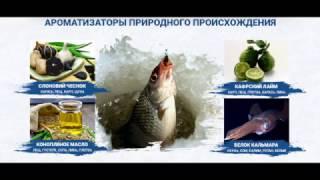 видео Купить Fish XXL (ХХЛ) активатор клева в аптеке YODI