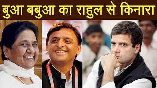 Akhilesh Yadav, Mayawati ने Rahul Gandhi से बढ़ाई दूरी, UP में Congress का हाल बुरा | वनइंडिया हिंदी