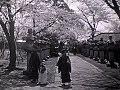 Le Printemps Au Japon (1915)