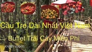 Cầu Tre Dài Nhất - Đạt Kỷ Lục Guinness Việt Nam - Rừng Tràm Trà Sư An Giang - Longest Bamboo Bridge
