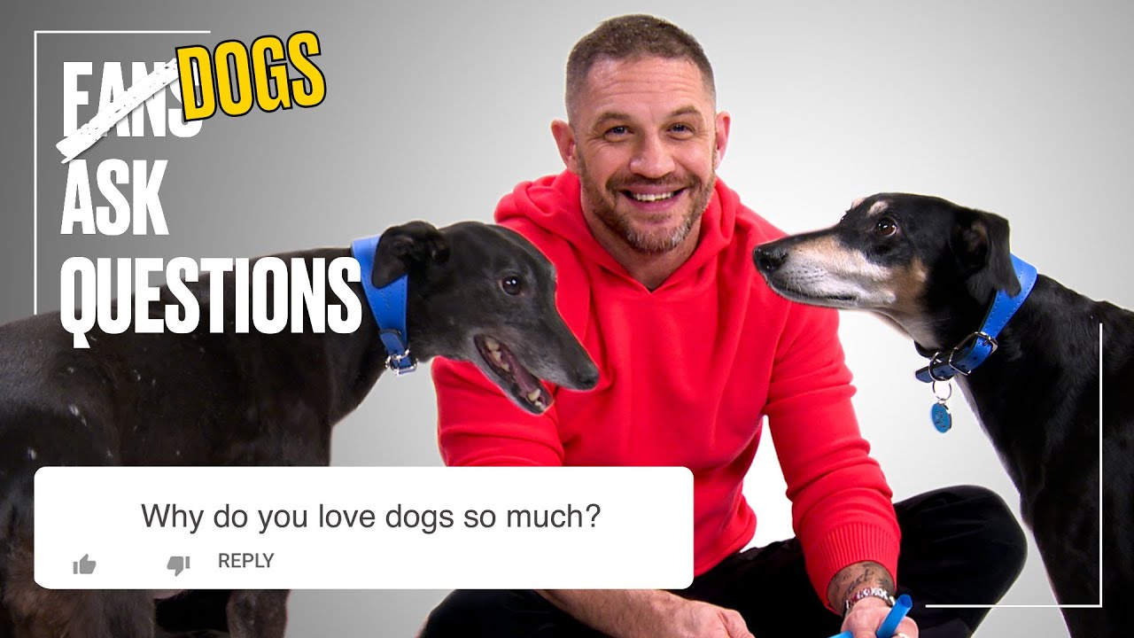 Tom Hardy Plays With Rescue Dogs | FAQs | @LADbible TV