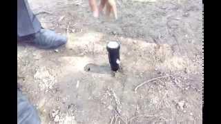 Soil pH and Moisture Meter (Analog)