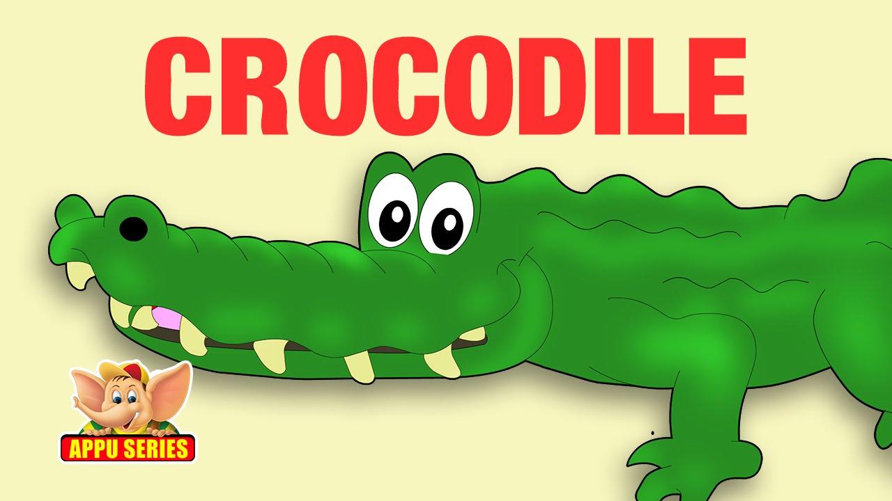 английский в картинках крокодил поверхность