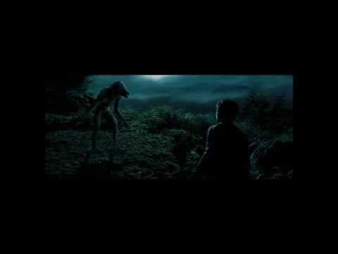 Вой оборотня (Гарри Поттер - Узник Азкабана)