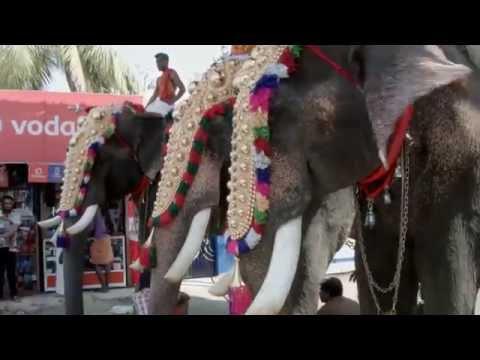 White Guy films his trip through India