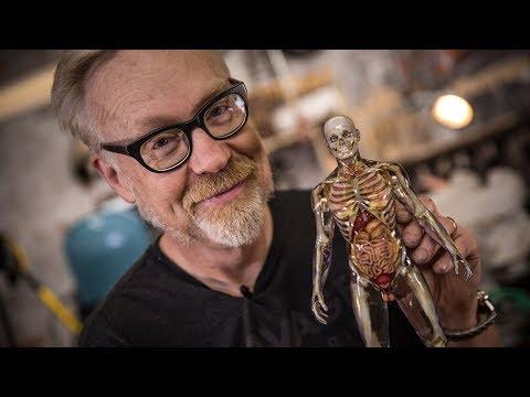 Inside Adam Savage's Cave: Human Anatomy Model!
