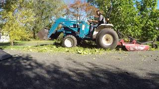 Mowing brush, October 2016