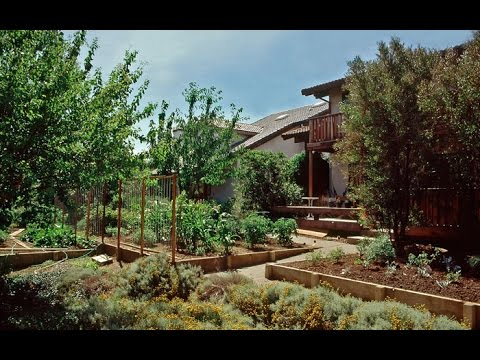 Geoff Lawton, on Urban Permaculture Possibilities