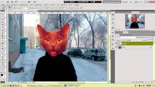 [Photoshop] Как сделать голову кота на фотографии