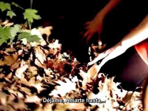 Type O Negative - Love You To Death (subtitulado al español)