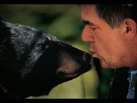 Dyslexia   Wonderful World of Ben Kilham and his Black Bears