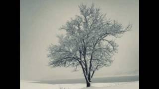 Rast aus Schuberts Winterreise