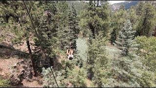 Zipline fun at Soaring Tree Top Adventures