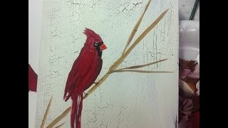 Learn How to Paint a Cardinal bird