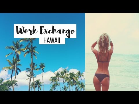 A pEEk** into our WORK EXCHANGE in HAWAII! - Plant Based Vegan Couple