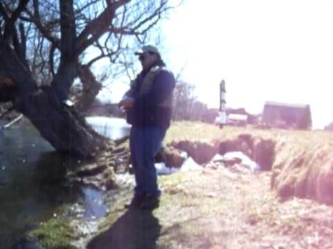 Fishing cattaraugus creek near arcade ny youtube for Cattaraugus creek fishing report