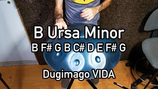 Dugimago Vida B Ursa minor 8 + Ding scale