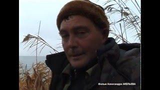 Охота на утку в декабре видео