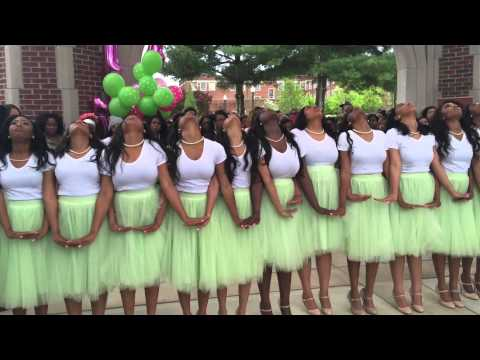 Spring 2K15 Zeta Kappa Chapter AKA Probate.  The University of Tennessee at Chattanooga   #7 love !