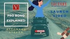 Pro Bono Explained
