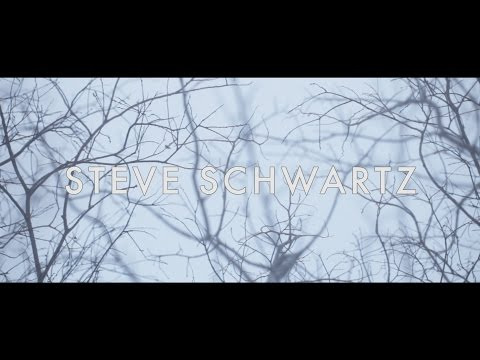Steve Schwartz  2015 Reel
