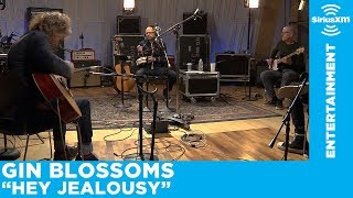 "Gin Blossoms Perform ""Hey Jealousy"" [Live @ SiriusXM]"