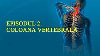Corectează-ți postura | Ep.2 Coloana vertebrală | www.petrifitness.com