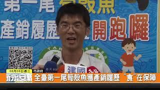"""1070808新永安新聞-全臺第一尾筍殼魚獲產銷履歷 """"食""""在保障"""