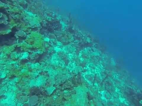 Buceo isla Tintipan - Colombia, El cantil. Gopro 3 Black edition