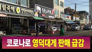 [R]코로나 여파..영덕 대게 판매 급감 / 안동MBC