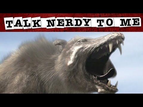 These 5 Prehistoric Mammals Were Pretty Monstrous | TNTM
