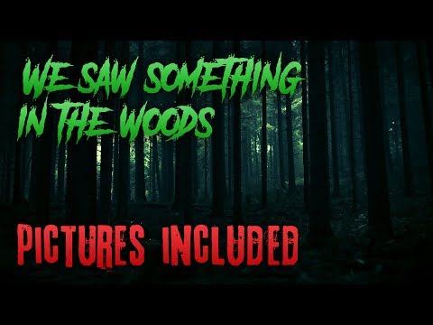 """We Saw Something In The Woods"" 