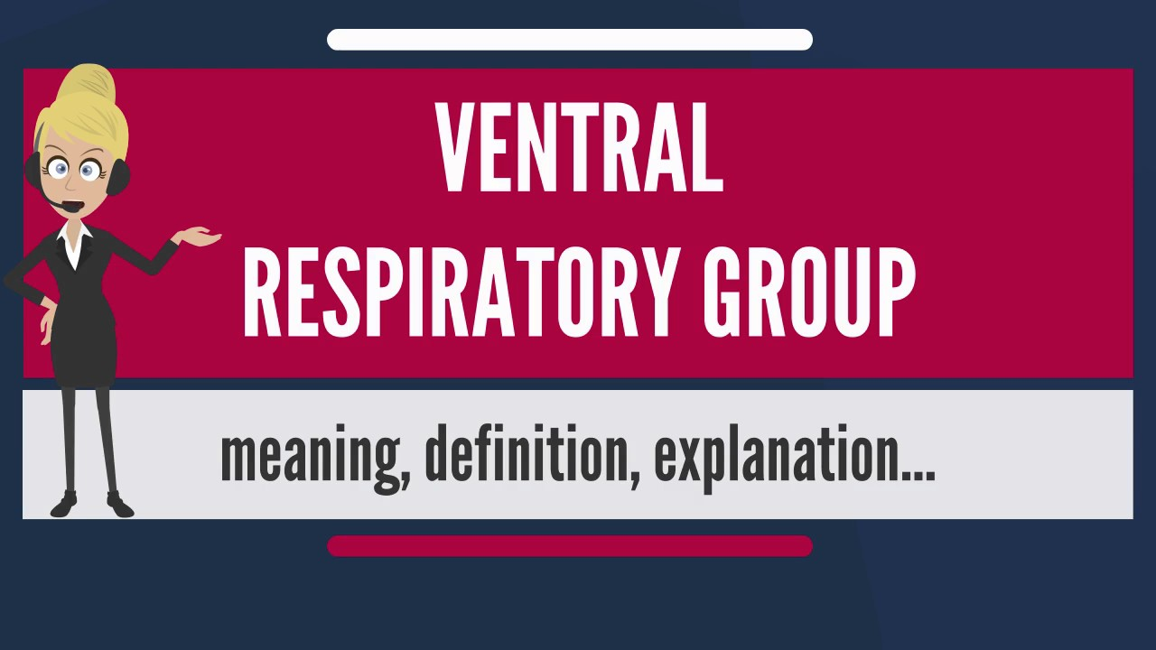What is VENTRAL RESPIRATORY GROUP? What does VENTRAL RESPIRATORY ...