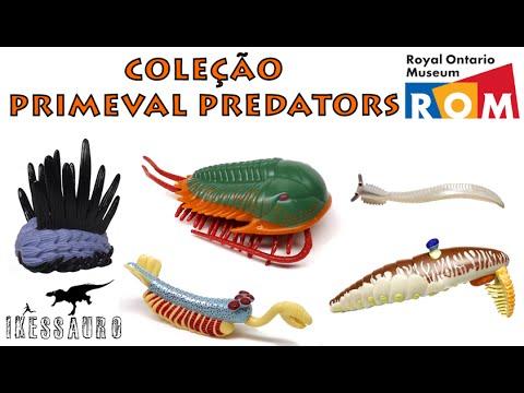 Primeval Predators of Burgess Shale (Royal Ontario Museum)