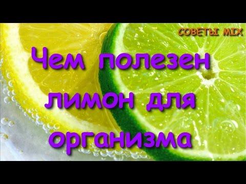 Лимон. Полезные и целебные (лечебные) свойства лимона. Чем