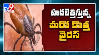 New virus in China : Tick borne virus has infected 60 people, 7 dead - TV9