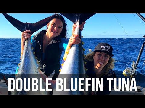Southern Bluefin In Waihau Bay  (Season 4 Ep 13)