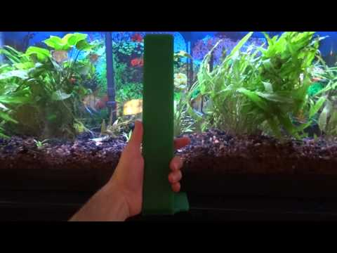How To Use Angelfish Breeding Slate.
