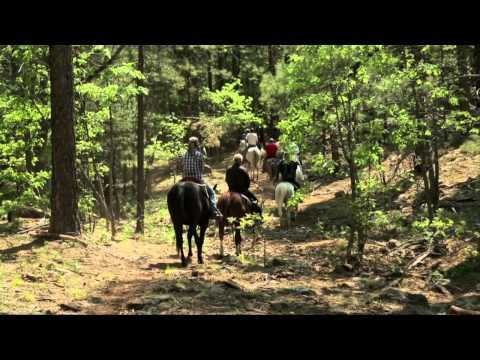 High Mountain Trail Rides