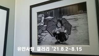 안동 유안사랑 사람들 21명 [사진] 전시회 '21.8…