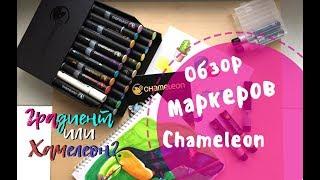 САМЫЕ ДЛИННЫЕ маркеры в мире. ОБЗОР|| Chameleon || Как заменить перо маркера?