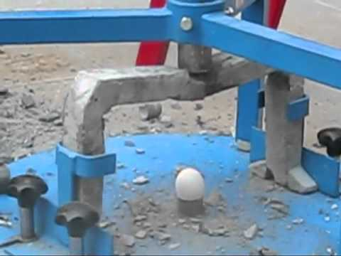 Egg Protection Device (EPD)- New Record