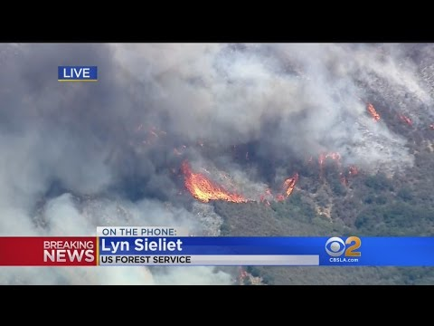 US Forest Service Spokeswoman: Blue Cut Fire Is 'Once In A Lifetime Kind Of Fire'